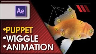 Adobe After Effects CS6 - Animating using Puppet Tool