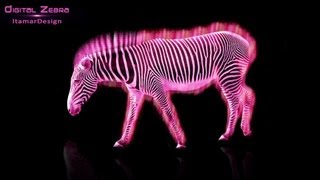 Speed Art | First Photo Manipulation!!! | Digital Zebra *HD*