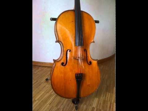 Chihiro Saito & Gen Yokosaka (Cellists in Stuttgart) , Handel: Concerto for 2 Vc & Orch.