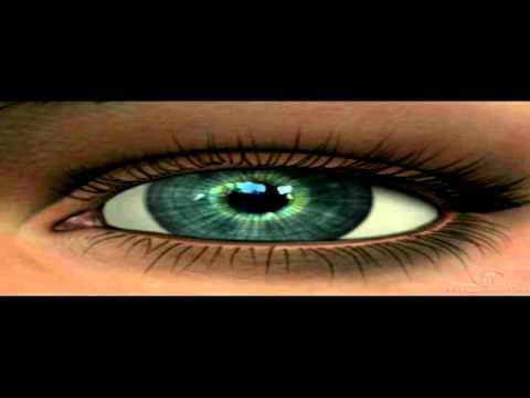 Al menos 30% de niños tienen mala visión from YouTube · Duration:  1 minutes 16 seconds
