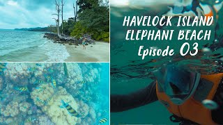 [Part 3] How to reach Elephant Beach | DEEP SEA SNORKELING | Travel during COVID | Andamans
