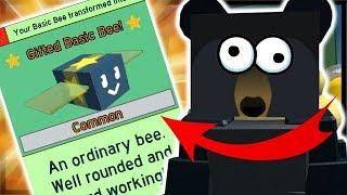 SUPER *OP* GIFTED BASIC BEE STAR TREAT! | Roblox Bee Swarm Simulator