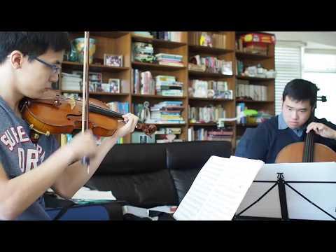 Mendelssohn Piano Trio No. 1 Movement 1