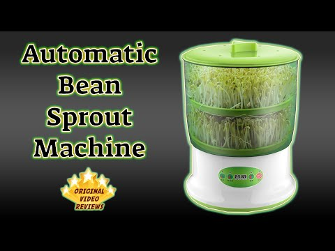 Bean Sprouts Machine Review 🌱