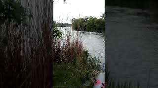 Рыбалка на сома весной Май 2021