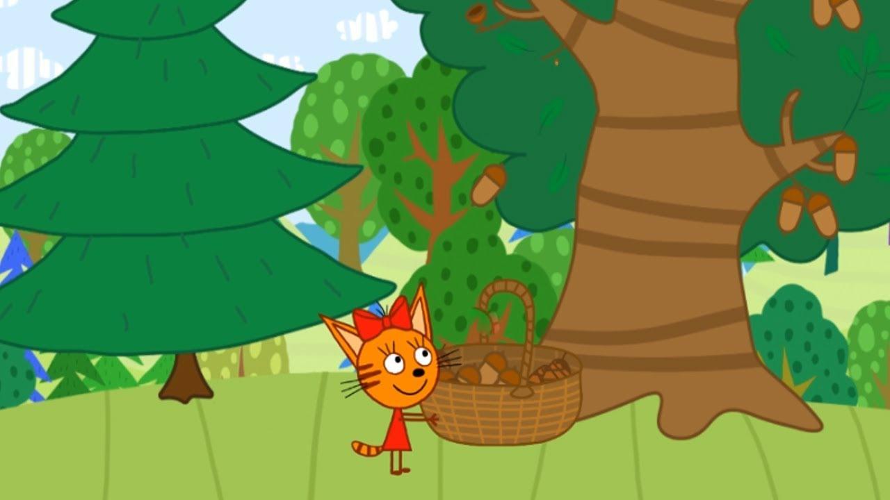 загадочный лес игра