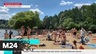 Москва 24 узнала, влияет ли жара на работоспособность - Москва 24