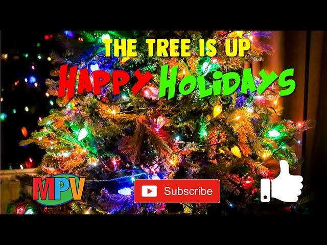 The Tree is Up - Happy Holidays Everyone (11.25.18) #1210