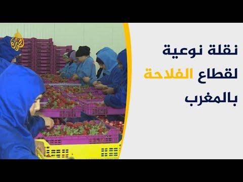 معرض الزراعة الدولي بالمغرب فرصة للفلاحين لعرض منتجاتهم  - نشر قبل 3 ساعة