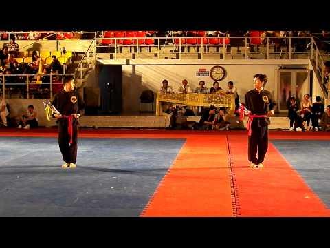 Hong Bang International Martial Art Festival - Binh Thai Dao