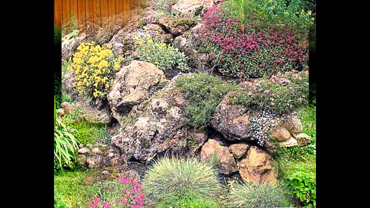 Garden ideas plants for rock gardens youtube for Garden design ideas rockery