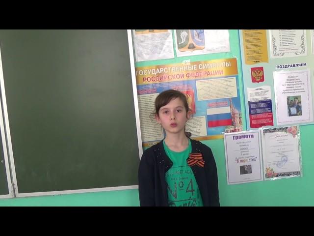 Изображение предпросмотра прочтения – АнжеликаТерёхина читает произведение «Слава» К.М.Симонова