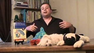 """Dog Training - Professional Dog Training """"secrets"""" Exposed"""