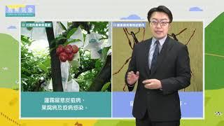 農業氣象1081113
