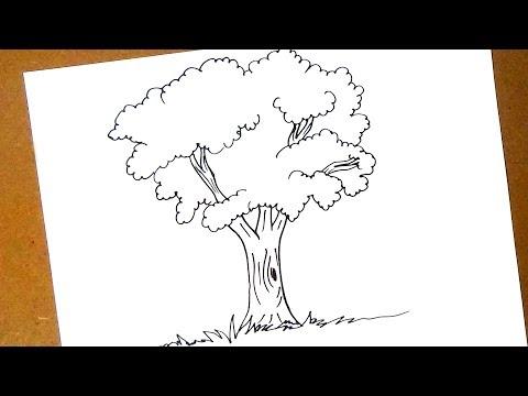 كيفية رسم شجرة Youtube