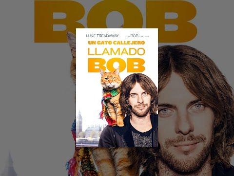 Un gato callejero llamado Bob (Subtitulada)