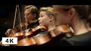Johann Strauss - Kaiser-Walzer - Music for 12 Violas by Deutschen Stiftung Musikleben
