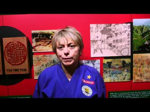 Black Flag Wing Chun [HKB Wing Chun] - 189th Testimony from USA, North America #92