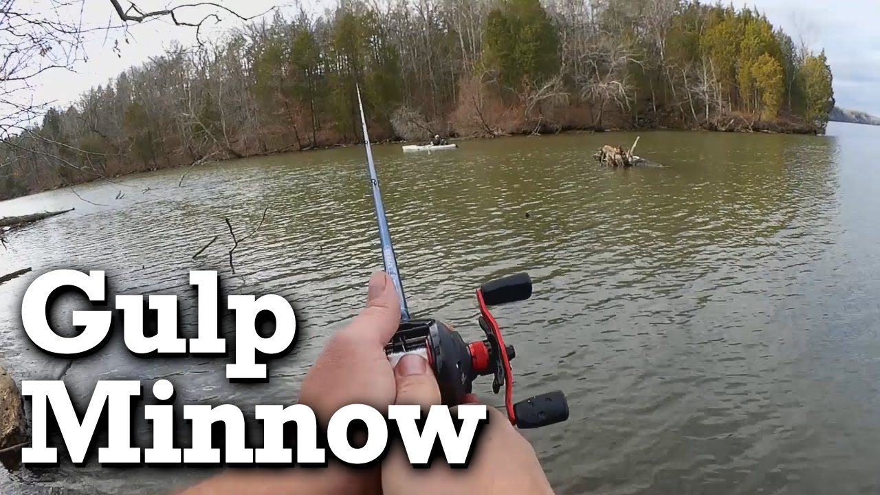 Fishing With a GULP Minnow in Winter - Float or Drop Shot?