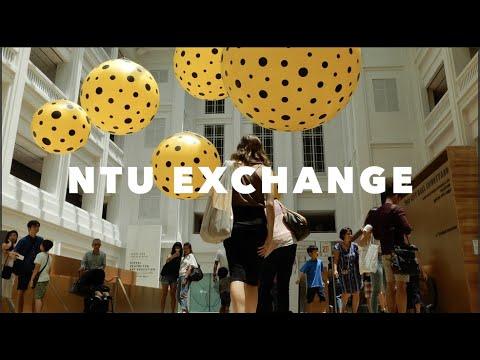 Singapore 2017: NTU and Nightlife