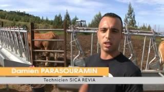FRCA La Réunion 35 L'élevage au féminin 151115