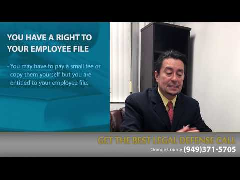 The Blue Law Group - Employee Issues during Employment