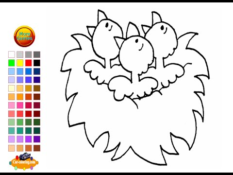 baby bird coloring pages for kids baby bird coloring pages youtube