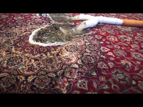 Best Rug Shoo For Cat Urine Carpet Vidalondon