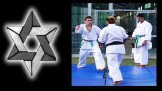 SanShin Kan Practical Self Defense: Open Audience Real Self Defense Demonstration