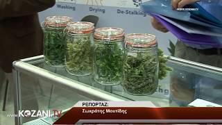 Τα εγκαίνια της 1ης Πανελλήνιας Έκθεσης Αρωματικών και Φαρμακευτικών Φυτών