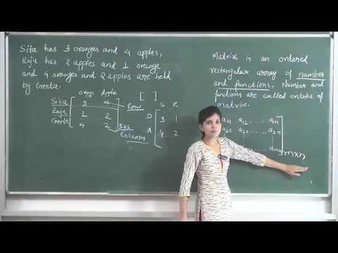 MATHS-XII-3-01 Matrix Intro. (2016) By Swati Mishra, Pradeep Kshetrapal channel