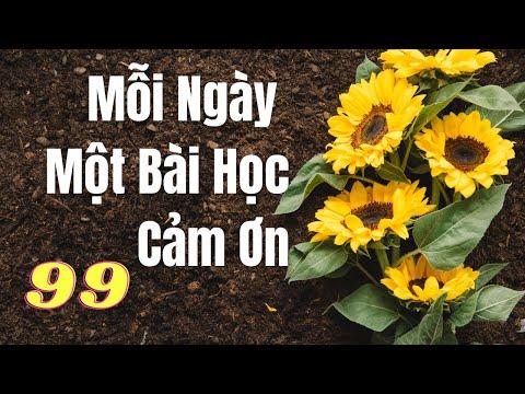 #99- Mỗi ngày một bài học cảm ơn - Thanh Ly & Bảo Phúc || Đọc: Huỳnh Minh Hiền
