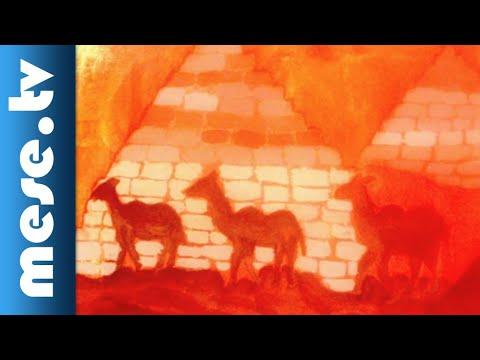 Zabszalma: Sivatag | MESE TV thumbnail