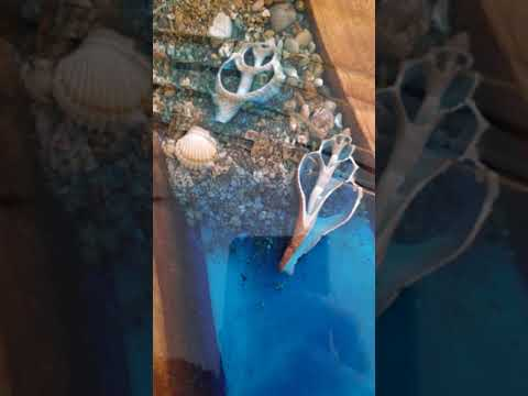 Ocean sea shells Epoxy resin table - Agartha Workshop - ETSY
