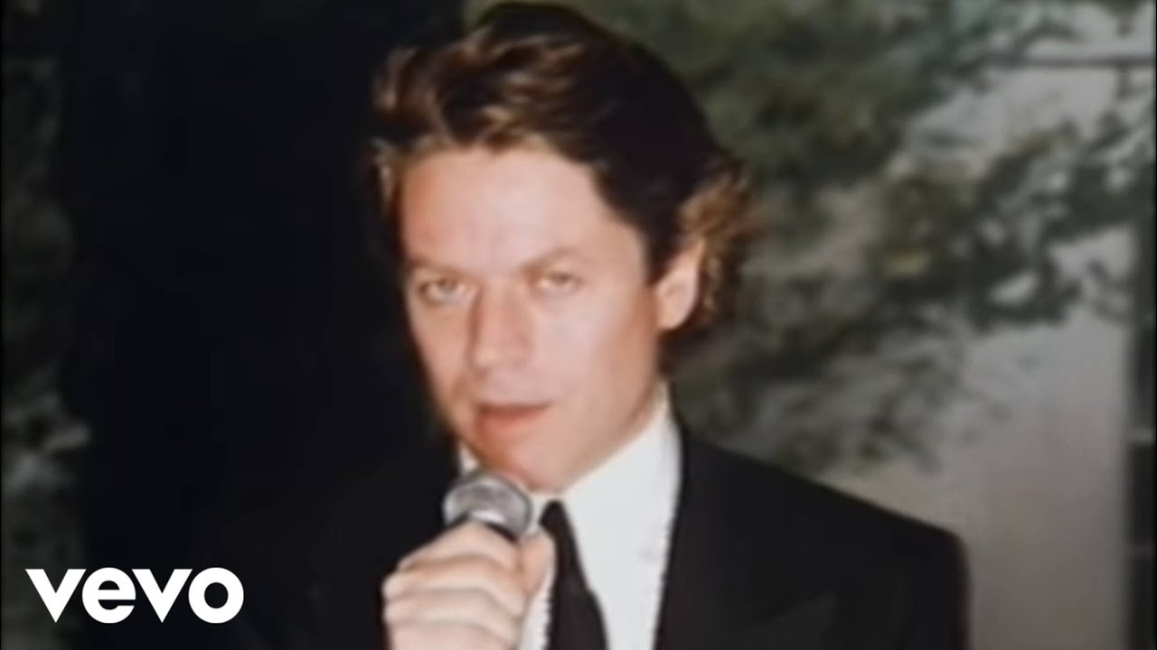 Robert Palmer - I Didn't Mean To Turn You On (Official Video)
