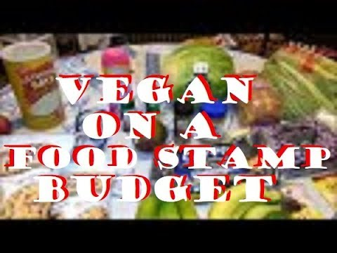 Vegan on a Food Stamp Budget ~ $40 per Week for a family of 3 ~