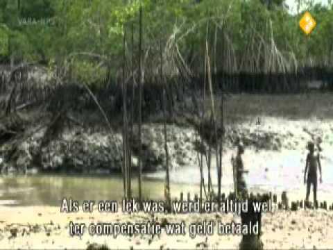 Zembla - Shell en de Niger Delta 1/3