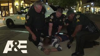 Live PD: Hit-and-Run Hobbled (Episode 33) | A&E