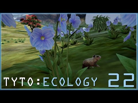 ADORABLE PIKAS OF THE HIMALAYAN MOUNTAINS || TYTO: ECOLOGY - Episode #22