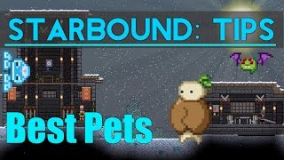 Starbound Tips: Best Pets