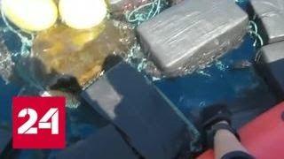Американские полицейские спасли черепаху из
