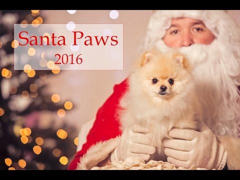 SantaPaws 2016