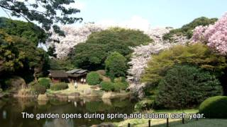 TOKYO NATIONAL MUSEUM - The Museum garden and teahouses