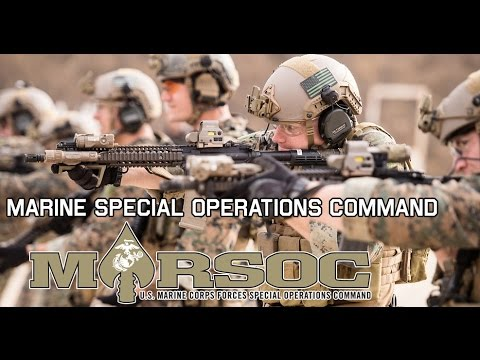 "Marine Special Operations Command | MARSOC ""Always Faithful, Always Forward"""