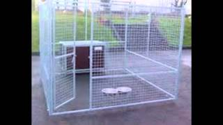 Dog Kennels Northern Ireland