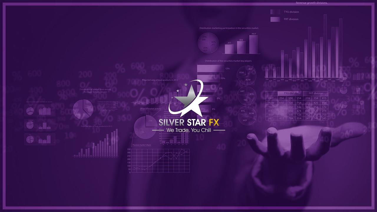 Image result for silverstar live