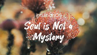 intuitionOS: Soul is Not a Mystery [Part 4]