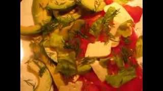 салат: сыр-помидоры-авокадо