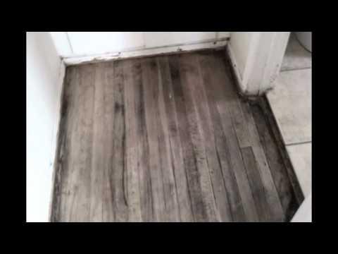 Hard Wood Floors Staining and Refinishing