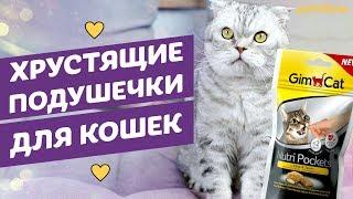 Лакомства-подушечки для кошек Gimcat Nutri Pockets обзор